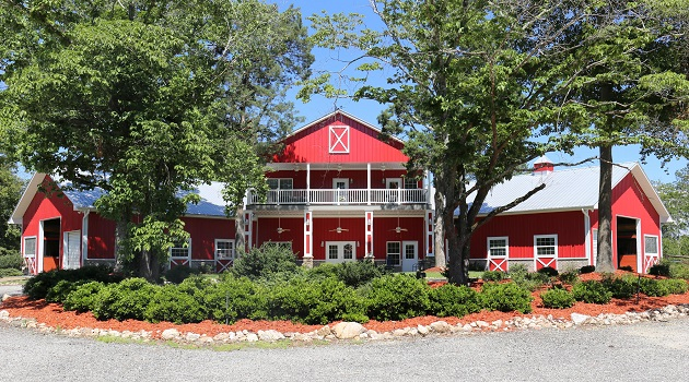 Big Red Barn Retreat Announces Healing Lenses Exhibit The